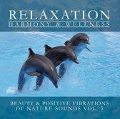 Beauty & Positive Vibrations Of Nature Sounds