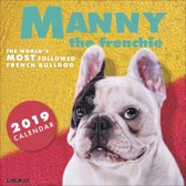 Franse Bulldog - Manny The Frenchie Kalender 2019