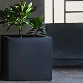 Bloembak Fenice Cube 65 Modular - Double Wall - 65cm Antraciet