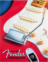 Metalen Retro Bord Fender