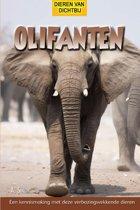 Dieren van dichtbij - Olifanten