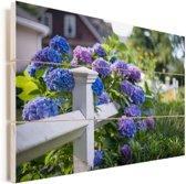 Piket hek met hortensia Vurenhout met planken 90x60 cm - Foto print op Hout (Wanddecoratie)