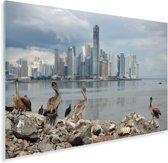 Donkere wolken boven Panama Stad Plexiglas 90x60 cm - Foto print op Glas (Plexiglas wanddecoratie)