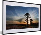 Foto in lijst - Parana pine tegen een zonsondergang fotolijst zwart met witte passe-partout 60x40 cm - Poster in lijst (Wanddecoratie woonkamer / slaapkamer)