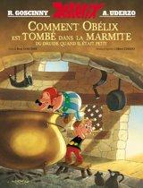 Boek cover Astérix - Comment Obélix est tombé dans la marmite quand il était petit van Rene Goscinny