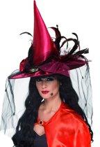 Luxe heksenhoed voor volwassenen Halloween - Verkleedhoofddeksel - One size