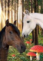 Kaart Paarden - Paardenkaart - Kaartensetje Paarden