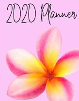 2020 Planner: Plumeria Flower Pink 2020 Monthly Planner Organizer Undated Calendar And ToDo List Tracker Notebook