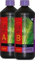B'cuzz Coco Nutrition A+B 1L