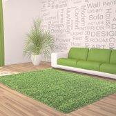 Hoogpolig shaggy vloerkleed 160x230cm groen - 5 cm poolhoogte