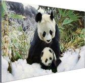 FotoCadeau.nl - Moeder panda en welp in de winter Aluminium 90x60 cm - Foto print op Aluminium (metaal wanddecoratie)