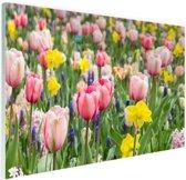 Tulp tuin Glas 60x40 cm - Foto print op Glas (Plexiglas wanddecoratie)