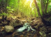 Papermoon Forest Creek Vlies Fotobehang 200x149cm 4-Banen
