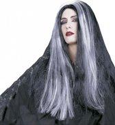 Halloween Heksenpruik met lang grijs/zwart haar