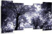 Canvas schilderij Bomen | Grijs, Wit, Zwart | 150x80cm 5Luik