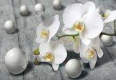 Fotobehang Modern Abstract Flowers Design | L - 152.5cm x 104cm | 130g/m2 Vlies