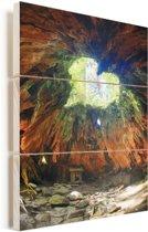 Hartvormig gat in een Japans boomstronk op het eiland van Yakushima Vurenhout met planken 40x60 cm - Foto print op Hout (Wanddecoratie)