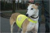 Beeztees Safety Gear Veiligheidsvest - Hond - Geel - L