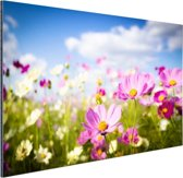 Bloemen in volle bloei Aluminium 90x60 cm - Foto print op Aluminium (metaal wanddecoratie)
