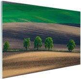 Velden Oost-Europa Glas 90x60 cm - Foto print op Glas (Plexiglas wanddecoratie)