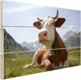 Liggende koe met bel Hout 120x80 cm - Foto print op Hout (Wanddecoratie)