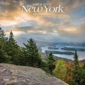 New York, Wild & Scenic 2019 Calendar