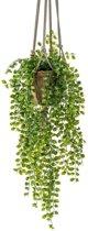 Kunst hangplant Ficus in pot met touwen 16 cm
