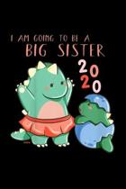I'm Going To Be A Big Sister 2020: Kids Im Going To Be A Big Sister 2020 Dinosaur Journal/Notebook Blank Lined Ruled 6X9 100 Pages