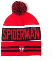 Spiderman - Big Spidey Logo Beanie