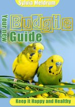 Your New Budgie Guide