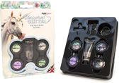 PaintGlow Eenhoorn / Unicorn Chunky glitter make-up set voor gezicht, nagels & lichaam - 4 kleuren, incl. lijm, kwast en spons!