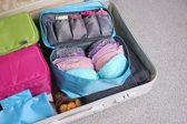 Travelsky Dames Packing Cubes Voor BH – Lingerie - Ondergoed - Koffer Organiser - Bagage Organizer – Roze