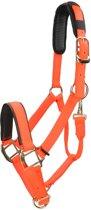 Shires Halster Nylon Topaz - Orange - cob