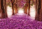 Fotobehang Flowers Tree Path Pink   XXL - 206cm x 275cm   130g/m2 Vlies
