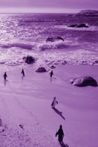Alive! little penguin friends - Violet duotone - Photo Art Notebooks (6 x 9 series)