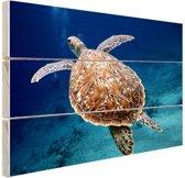 Zeeschildpad  Hout 160x120 cm - Foto print op Hout (Wanddecoratie) XXL / Groot formaat!