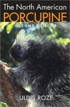 The North American Porcupine