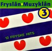 Fryslan-Muzyklan (3)