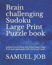 Brain Challenging Sudoku Large Print Puzzle Book