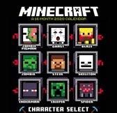 Minecraft Kalender 2020