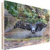 De harpij vliegt over het water Vurenhout met planken 90x60 cm - Foto print op Hout (Wanddecoratie)