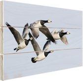 Vier ganzen in de lucht Hout 80x60 cm - Foto print op Hout (Wanddecoratie)