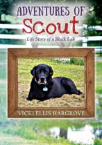 Adventures of Scout