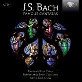 J.S. Bach: Famous Cantatas