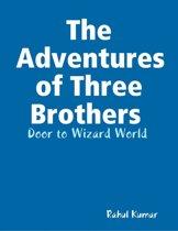 The Adventures of Three Brothers : Door to Wizard World