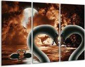 Canvas schilderij Vogels | Bruin, Wit, Zwart | 120x80cm 3Luik
