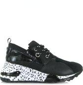 STEVE MADDEN Cliff Sneaker Zwart - 41