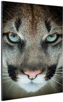Close-up poema Aluminium 80x120 cm - Foto print op Aluminium (metaal wanddecoratie)