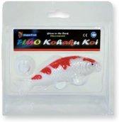 Deco fluo Kohaku voor aquarium