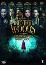 DVD cover van Into The Woods